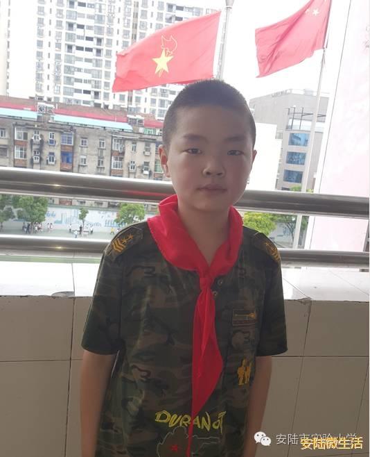 【安陆市v木耳木耳最美少年系列之】511班杨航小学生小学小图片